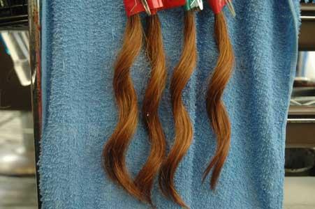 久しぶりに実験の毛束を検証1