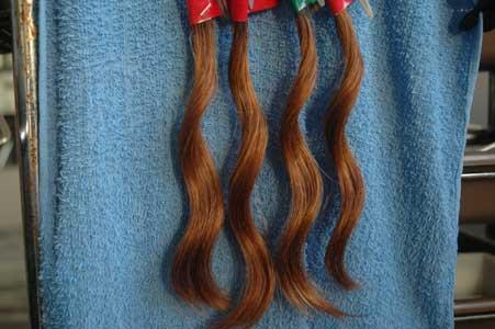 久しぶりに実験の毛束を検証3
