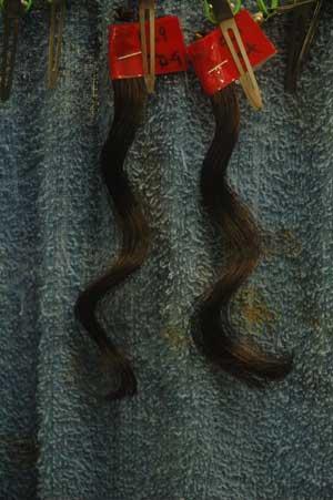 沖縄県宜野湾市美容室stylista|さっそく試してみる。2