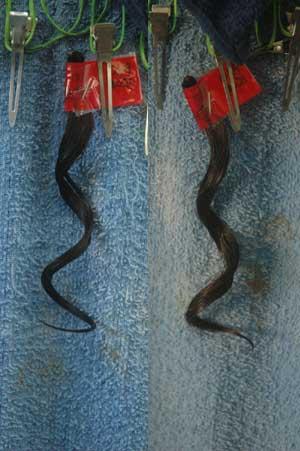 沖縄県宜野湾市美容室stylista|最近のパーマは落ちやすい。1